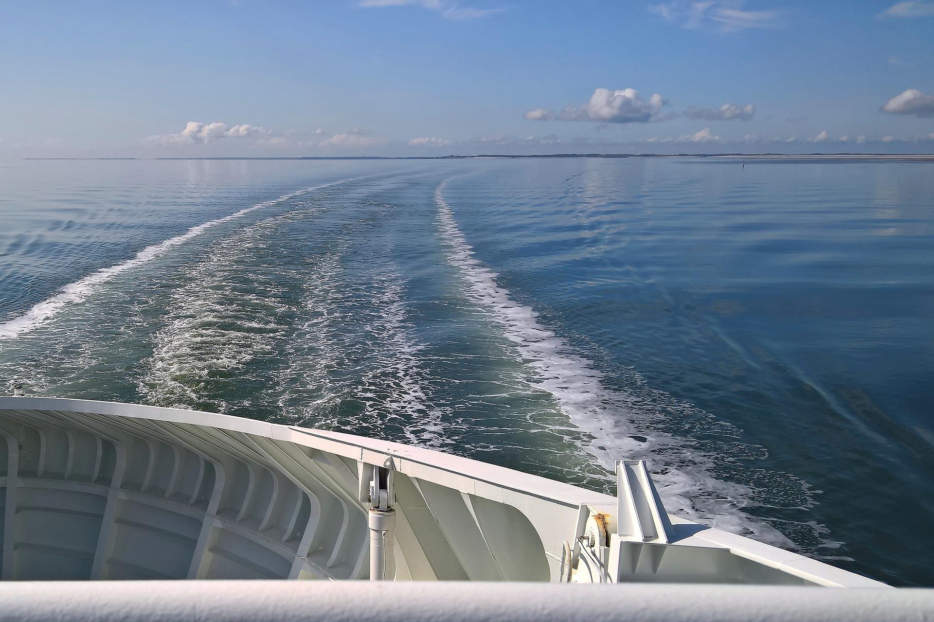 Online Café scientifique: «Science et Conscience : Recherche en Mer et Découvertes Scientifiques»
